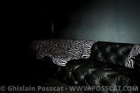 black leather sofa for photo shoot