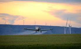 Crop duster spraying wheat