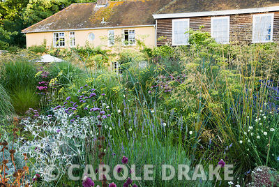Central circular bed planted with a combination of grasses and herbaceous perennials including Verbena bonariensis, Eryngium x giganteum, bronze fennel, Echinacea purpurea, lavender and Phlomis russeliana. Broughton Buildings, Broughton, nr Stockbridge, Hants, UK