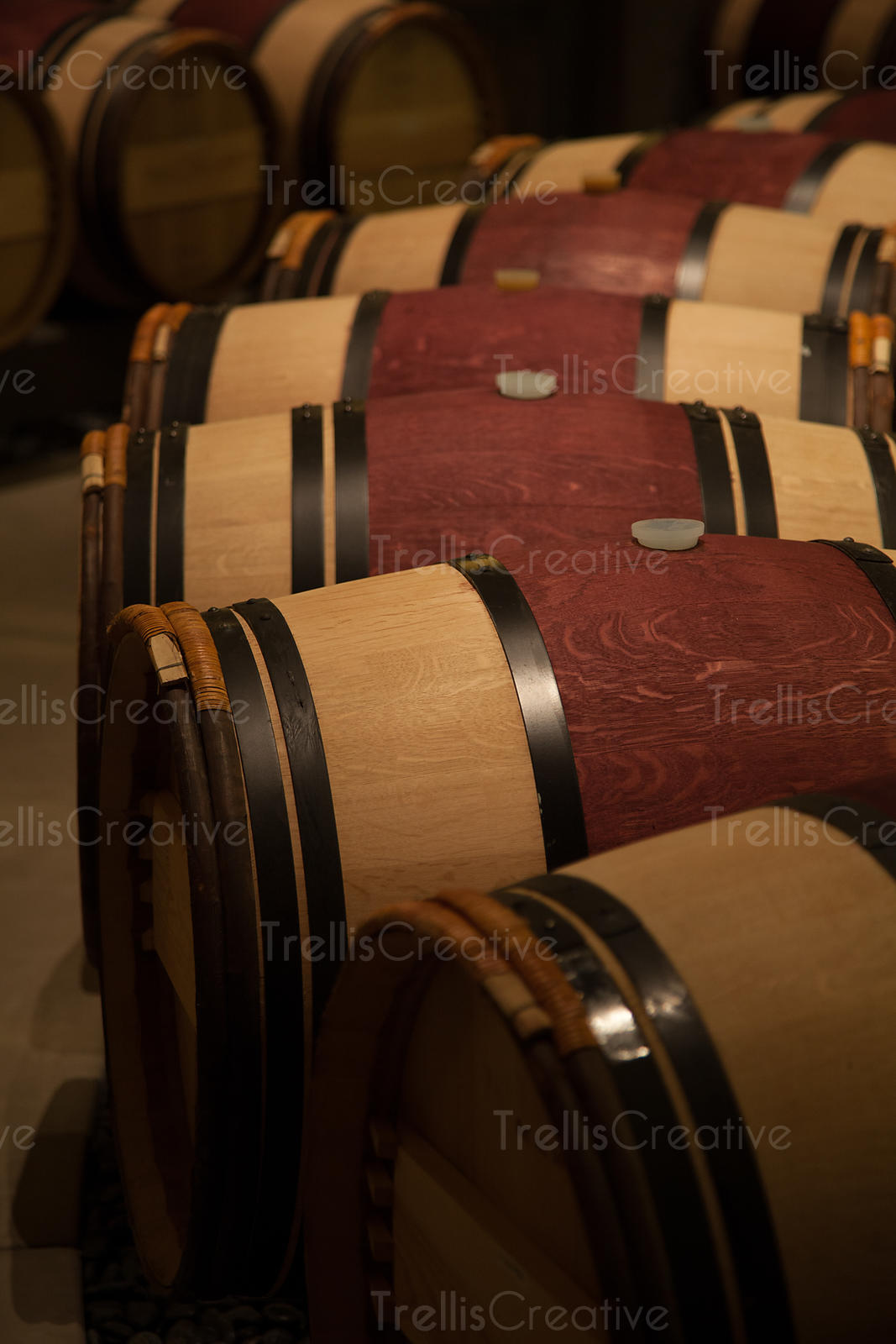Traditional French oak wine barrels in a winery cellar