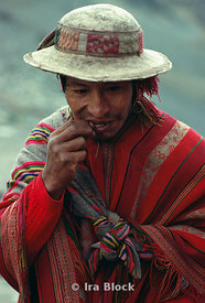 Chewing coca leaves
