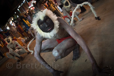 Dancer imitating a Langur Monkey in a parade in Pushkar, Rajasthan, India