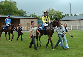 Mr Tambourine entering the winners enclosure