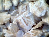 OATS: extreme close-up of oats #5