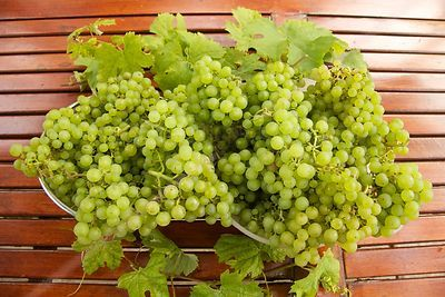 Grapes in bowls on Garden Table