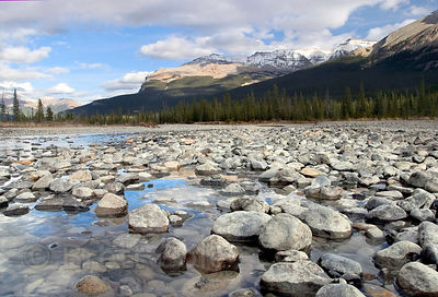 Reflections in the North Saskatchewan River, Banff NP, Canadian Rockies.
