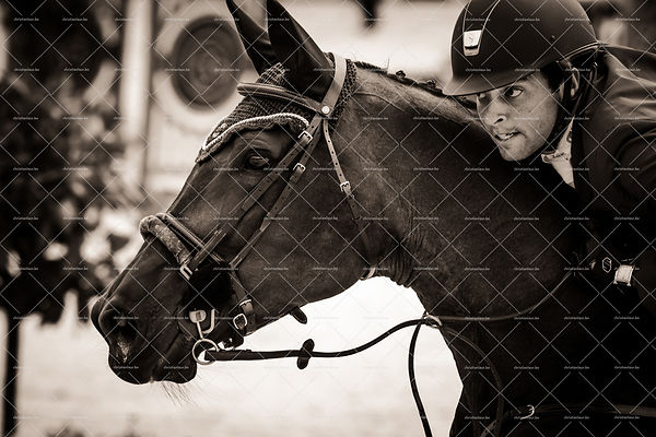 Jumping Knokke Hippique 2015 photos