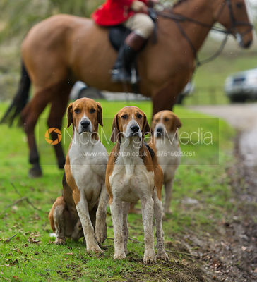 The Belvoir Hunt at Croxton Park 23/2 photos
