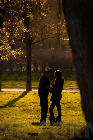 A young couple embrace in a park in evening sunlight.