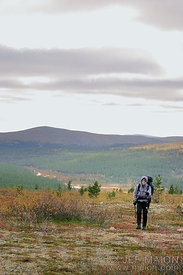 Hiker on a background of forest and hills