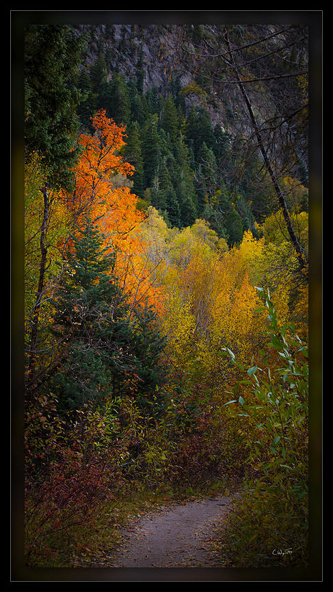 091016_Fall_Path_PD