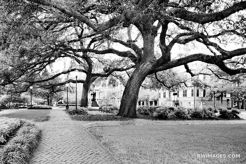 COLUMBIA SQUARE SAVANNAH GEORGIA BLACK AND WHITE