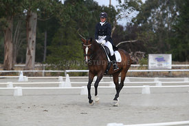 SI_Festival_of_Dressage_300115_Level_9_SICF_0466