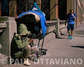 Hiding in Plain Sight | Paul Ottaviano Photography