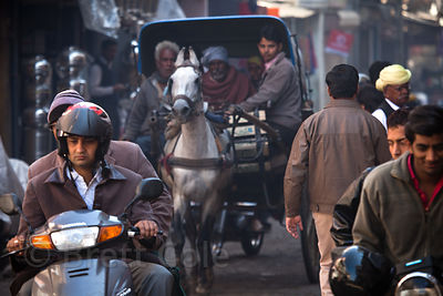 Horse drawn carriage in traffic, Jodhpur, Rajasthan, India