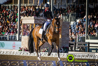 Royal_Windsor_Horse_Show_2017_029