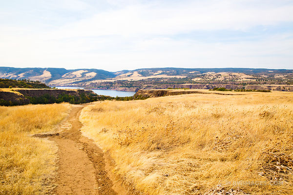 ROWENA CREST COLUMBIA RIVER GORGE OREGON COLOR