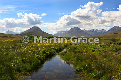 Marshland by Horga River, Eyjafjordur District, north Iceland