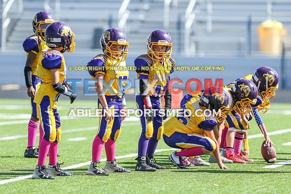 10-21-17_FB_Jr_PW_Wylie_Purple_v_Titans_MW00396