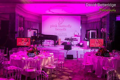 Pink_Butterfly_Benefit_2013_-_-158