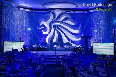 British_Olympic_Ball_2013-199