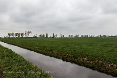 Rural scene, The Netherlands