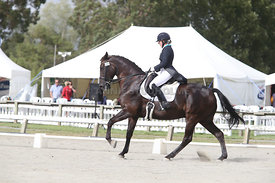 SI_Festival_of_Dressage_310115_Level_6_7_MFS_0620