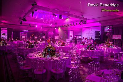 Pink_Butterfly_Benefit_2013_-_-174