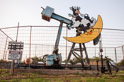 Pump Jack and Cow
