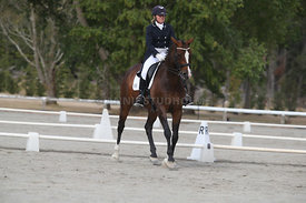 SI_Festival_of_Dressage_300115_Level_9_SICF_0461