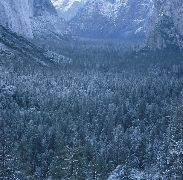 033-California_CA141055_Yosemite_Snow_Storm_005_Preview