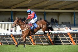 11th October 2013 NH Novices Hurdle with winner The Skyfarmer
