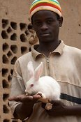 Young man with rabbit, which are bred for meat. Rwanda