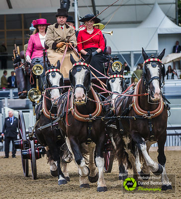 Royal_Windsor_Horse_Show_2017_022