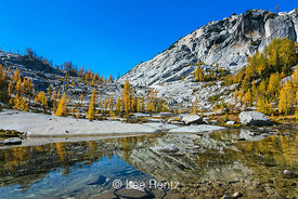 Snow Creek and Alpine Larches in The Enchantments