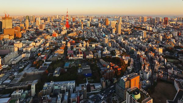 Bird's Eye: Arching Expressway & Tokyo Tower At Sunset