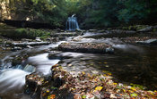 Autumn at Cauldron Falls, West Burton, wensleydale, North Yorkshire, UK.