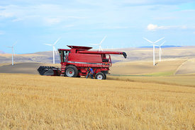 Combine_stopped_wheat_field