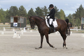 SI_Festival_of_Dressage_310115_Level_4_Champ_0586