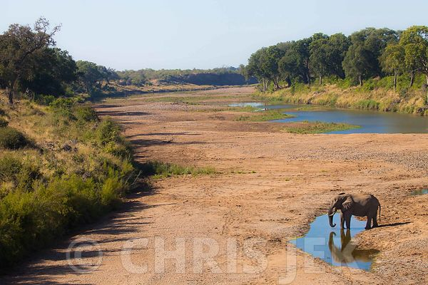 Kruger National Park photos