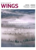 201711-Wings Magazine (Allemagne) Ice is Black