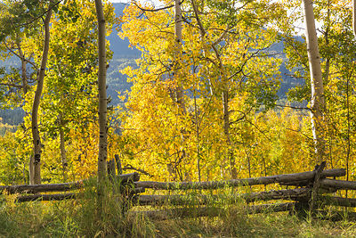 High Country Fence