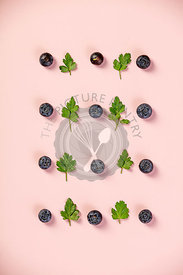 Pattern of blueberry and parsley leaves on light pink background. Flat lay, top view. Food background.