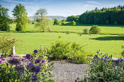 View south over surrounding farmland to distant fells from the sunny terrace planted with sun loving plants including alliums and Symphytum × uplandicum 'Axminster Gold'.