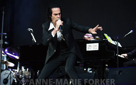 Nick_Cave_-_AM_Forker-8392