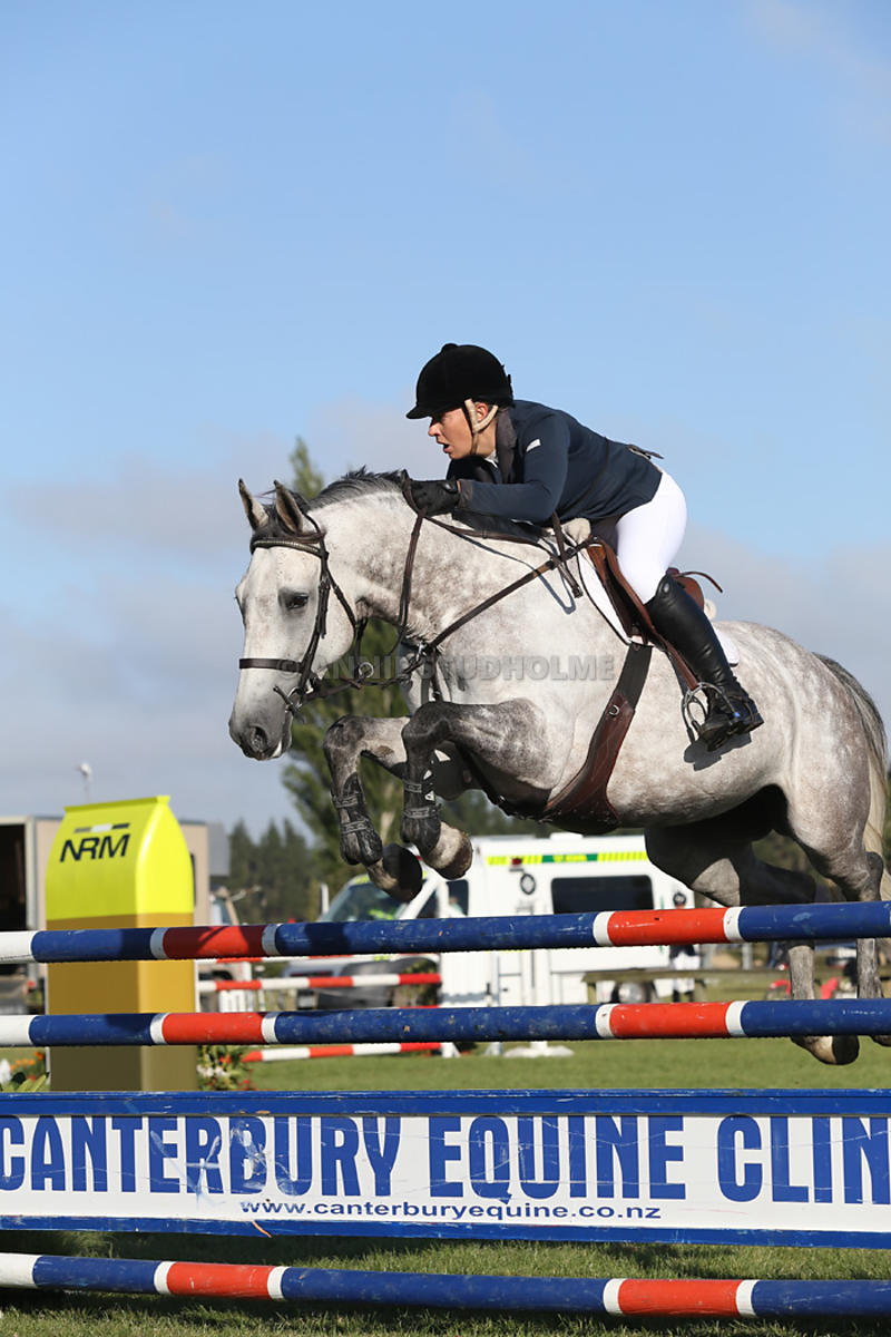 1.20m Horse Champ photos