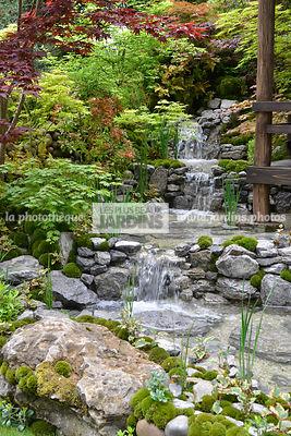 La phototh que les plus beaux jardins jardins for Massif jardin japonais