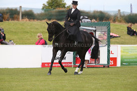 Canty_A_P_131114_Side_Saddle_1243