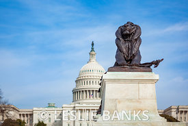 Lion Statue in the Ulysses S Grant Memorial