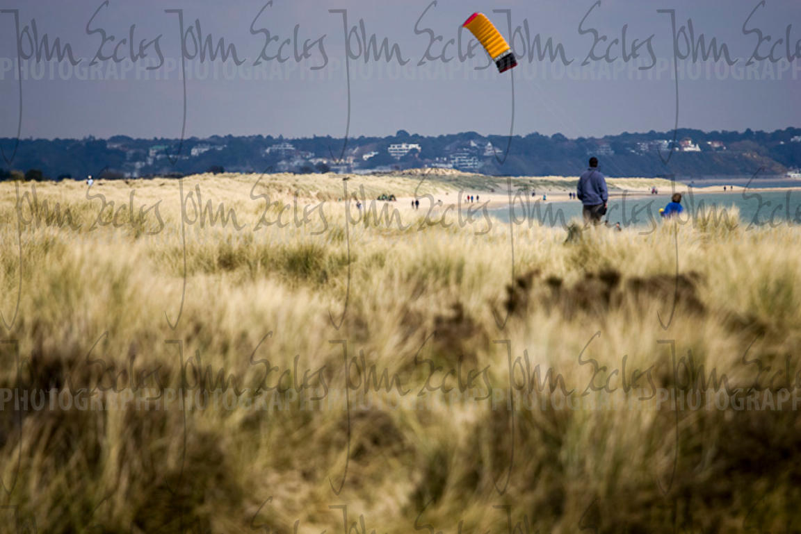 Kite flying at Studland